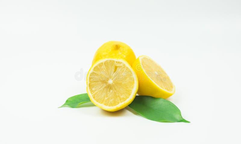 Zitrone-frische Trieb im Studio stockfotos