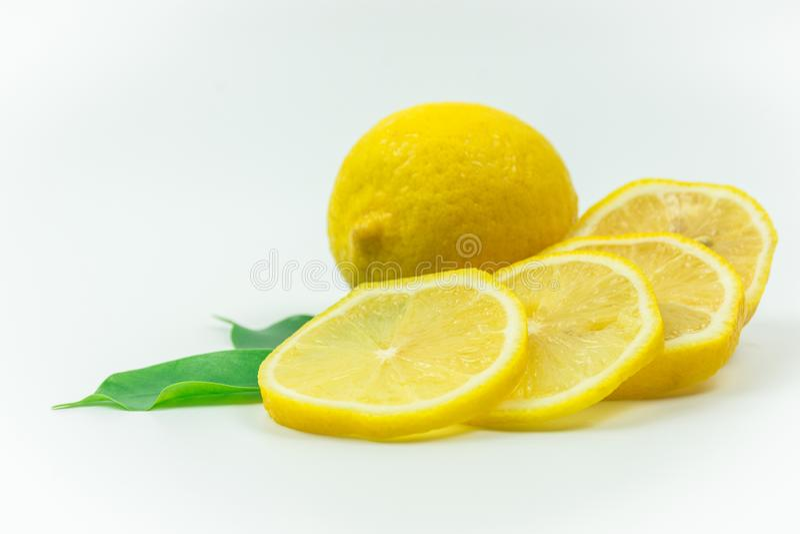 Zitrone-frische Trieb im Studio stockfotografie