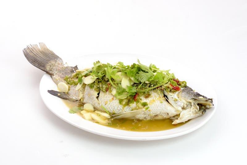 Zitrone gedämpfte Rotbarschfische stockfotografie