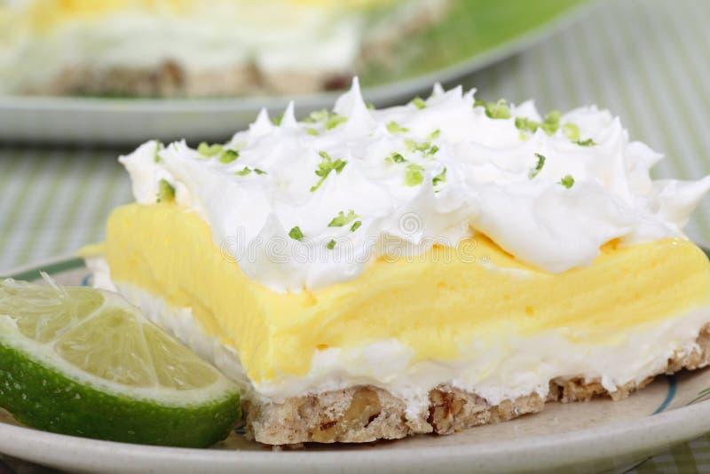 Zitrone-Kalk-Pudding-Nachtisch lizenzfreies stockbild