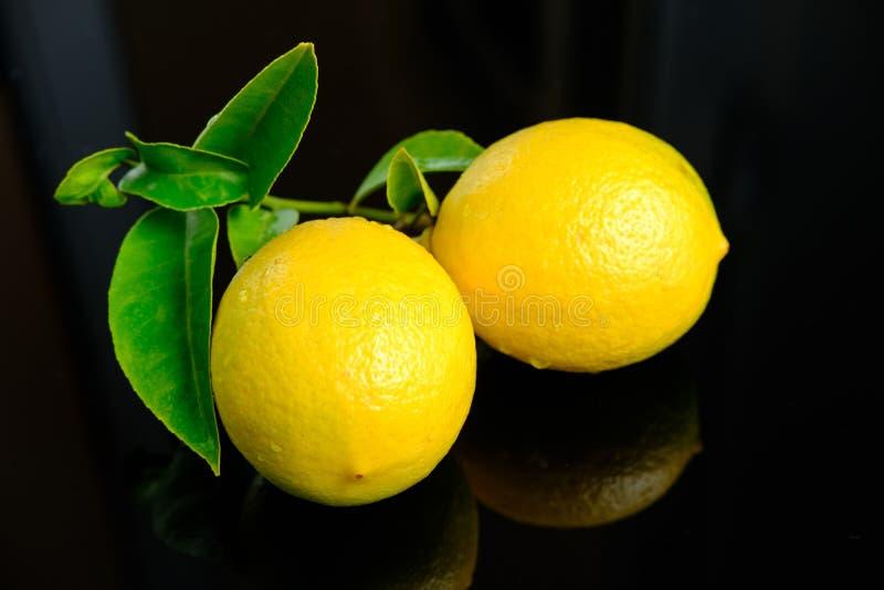 Zitrone mit grünen Blättern auf schwarzem Hintergrund lizenzfreies stockfoto