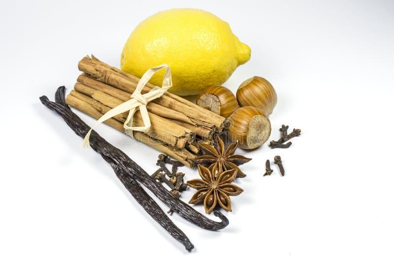 Zitrone und Gewürz stockbild