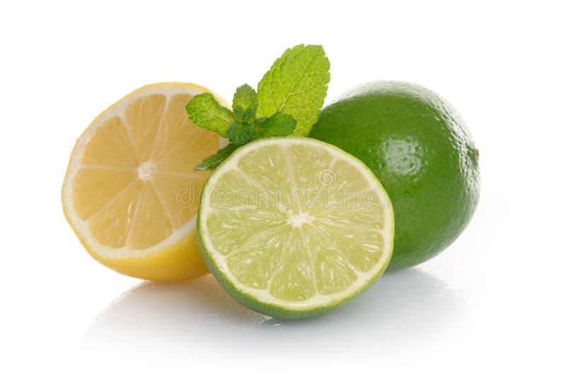 Zitrone und Kalk lizenzfreies stockbild