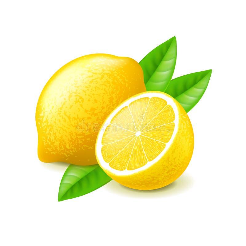 Zitrone und Scheibe auf weißem Vektor stock abbildung