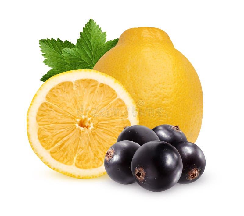 Zitrone und schwarze Johannisbeere, lokalisiert auf einem weißen Hintergrund stockfotografie