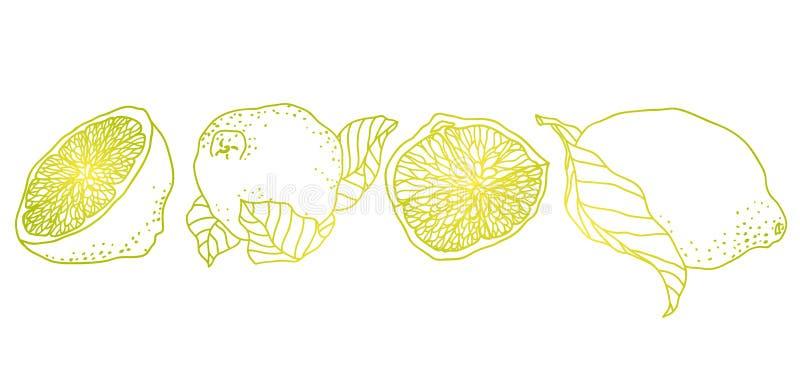 Zitrone Zeilendarstellung gemacht in der Weinlesehaustierart Es gibt FRU lizenzfreie abbildung