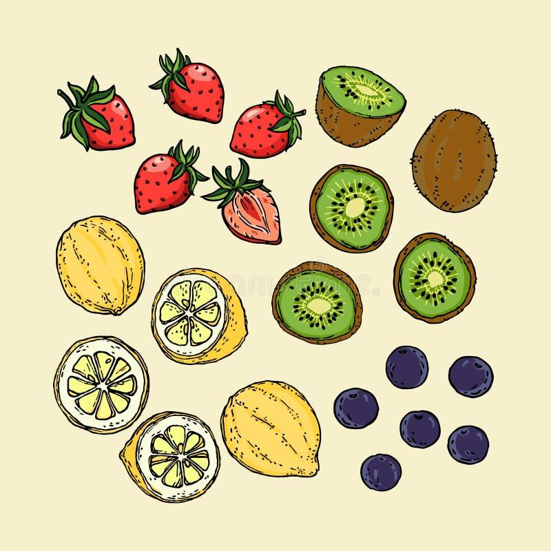 Zitronen-Erdbeerblaubeere und -Kiwi Fruit auf Hintergrund-Vektor stock abbildung