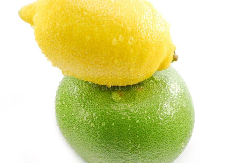 Zitronen- Früchte lizenzfreie stockbilder
