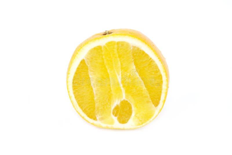 Zitronen- Frucht stockfotos
