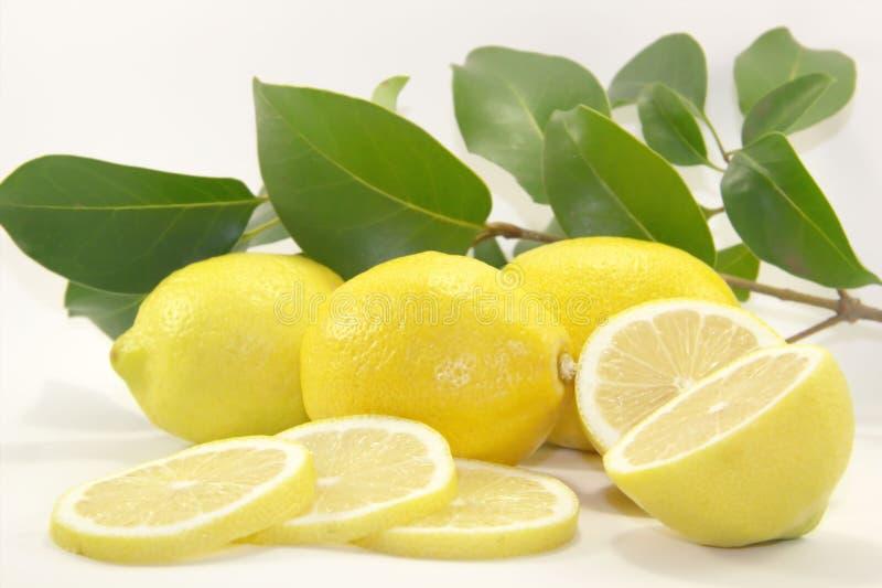 Zitronen mit Blättern lizenzfreie stockbilder