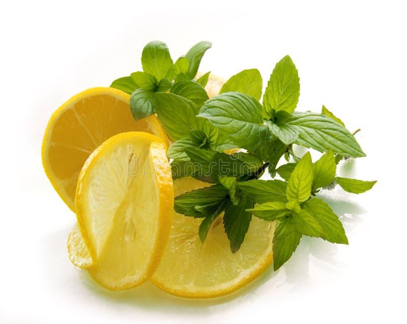 Zitronen mit der grünen Minze stockfotografie