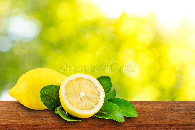 Zitronen mit grünen Blättern stockbild