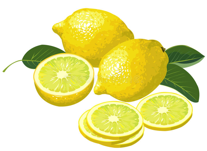 Zitronen mit Scheiben lizenzfreie abbildung