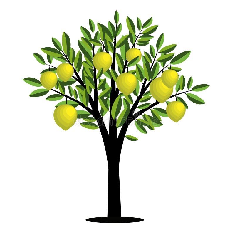 Zitronenbaum stock abbildung