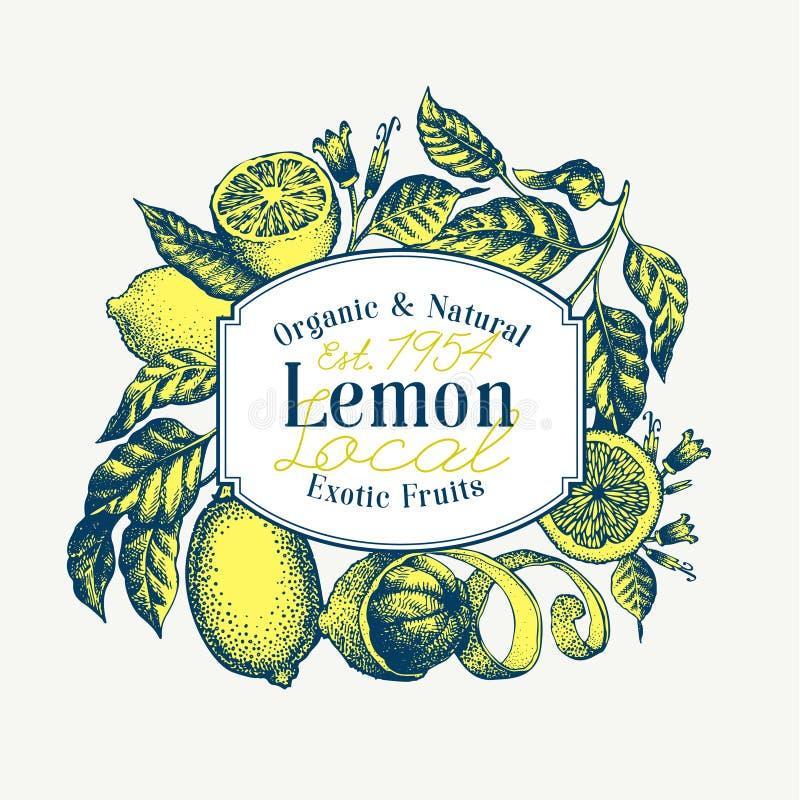 Zitronenbaumlogoschablone Hand gezeichnete Vektorfruchtillustration Gravierte Art Weinlesezitrusfruchtdesign lizenzfreies stockfoto