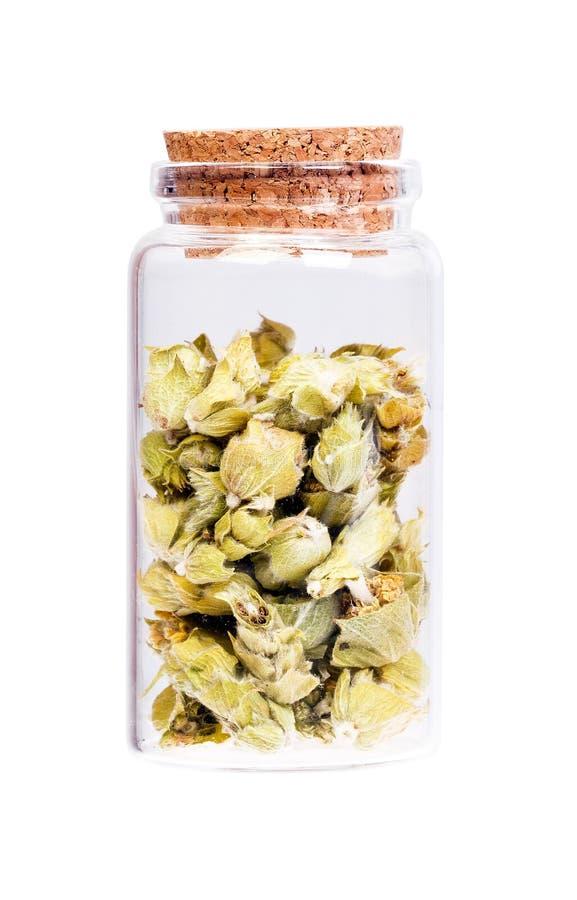 Zitronengras in einer Flasche mit Korkenstopper für medizinische Verwendung stockbild