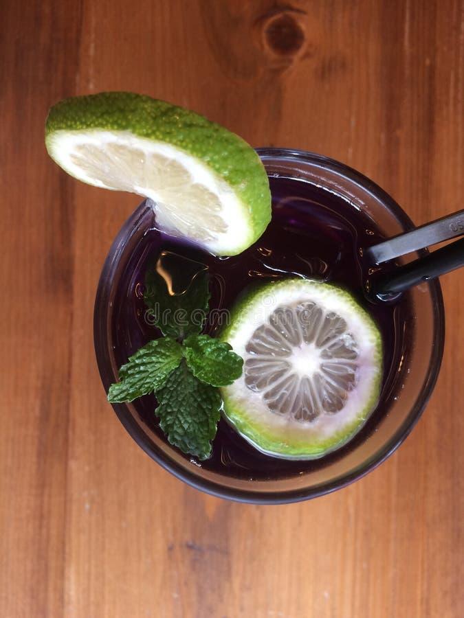 Zitronensaft-Tee aus Cranberry stockbild