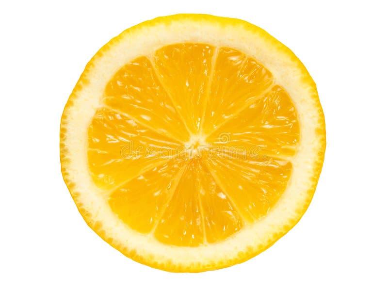 Zitronescheibe auf Wei? stockfotos