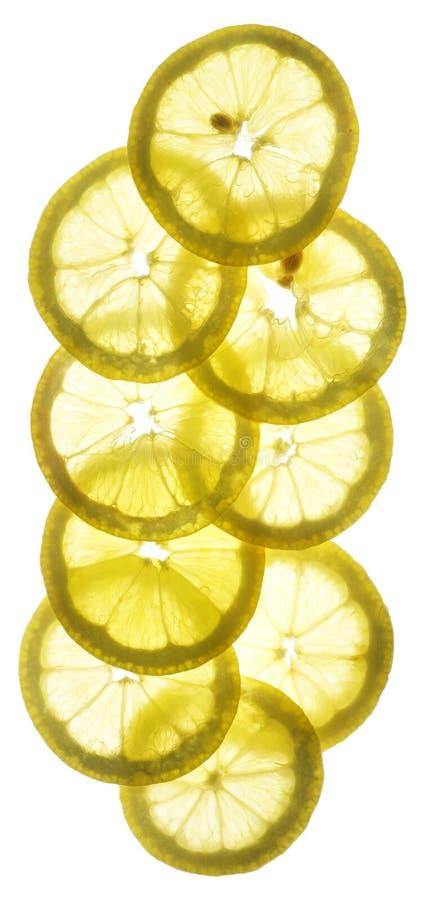 Zitronescheiben stockfotografie