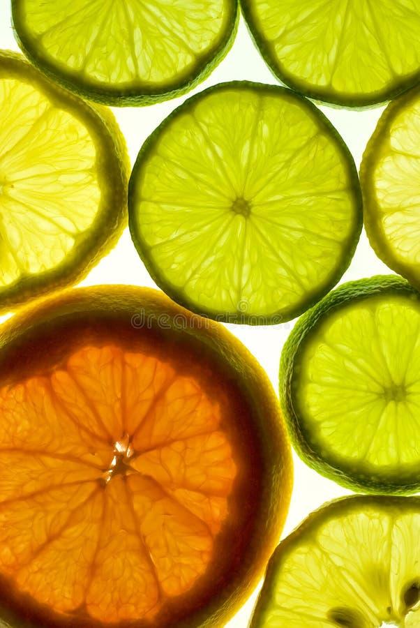 Zitrusfrüchte stockfoto