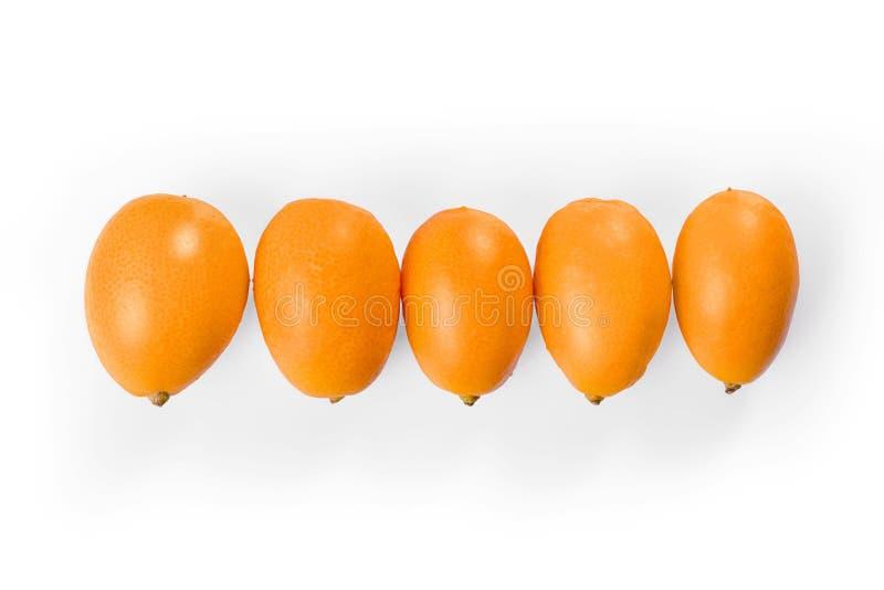 Zitrusfrüchte der japanischen Orange in der Reihe lokalisiert mit Beschneidungspfad lizenzfreie stockfotos