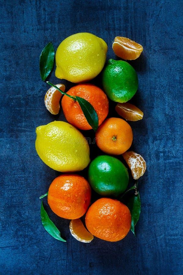 Zitrusfrüchte mit Blättern stockbild