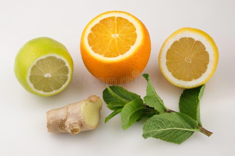 Zitrusfrüchte mit einem Stück der Ingwerwurzel lizenzfreie stockbilder
