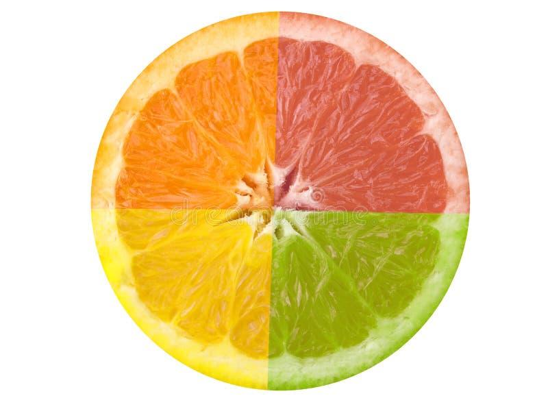 Zitrusfrucht stockfotos