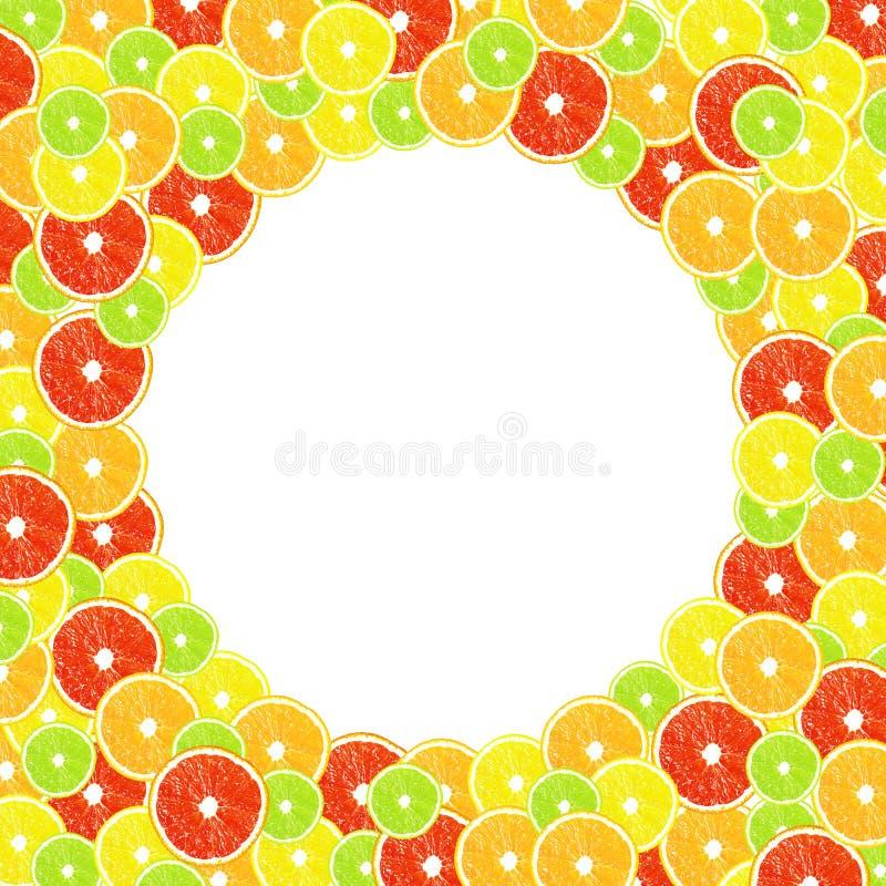 Zitrusfrucht auf einem weißen Hintergrund mit Rahmen stock abbildung