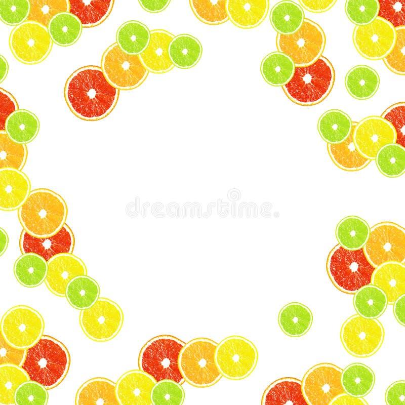 Zitrusfrucht auf einem weißen Hintergrund mit Rahmen für Design lizenzfreie abbildung