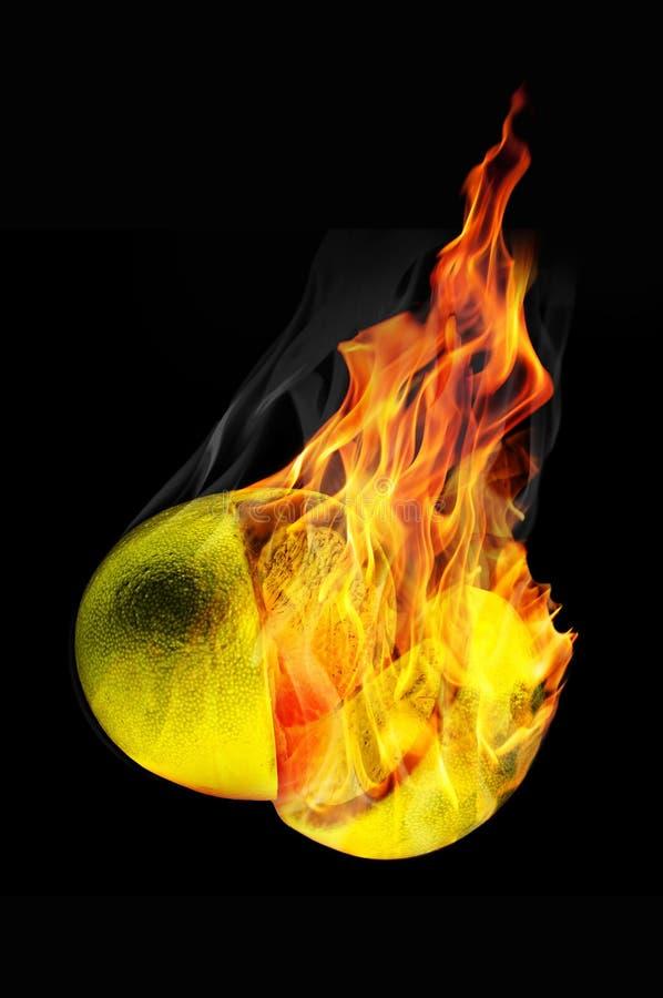 Zitrusfrucht auf Feuer stockbild