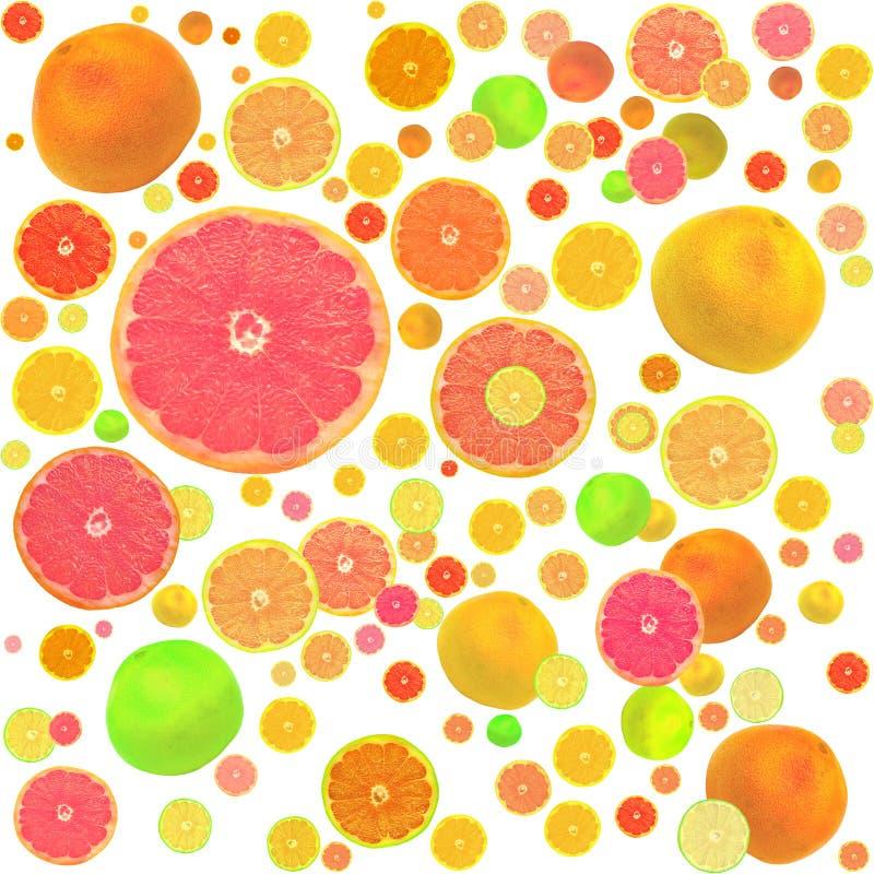 Zitrusfrucht-nahtloser Hintergrund lizenzfreies stockfoto