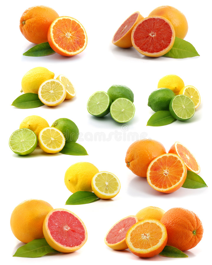 Zitrusfruchtansammlung stockfotografie