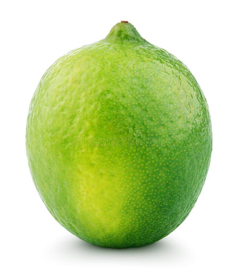 Zitrusfruchtkalkfrucht lokalisiert auf Weiß lizenzfreies stockbild