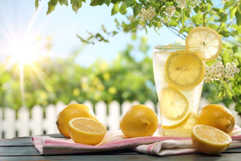 Zitrusfruchtlimonade in der Garteneinstellung stockbilder
