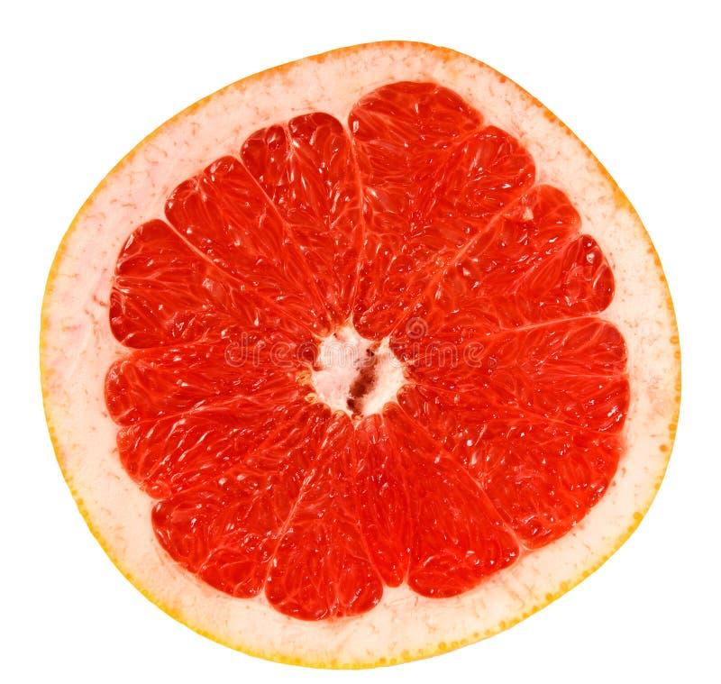 Zitrusfruchtpampelmusescheibe lizenzfreie stockbilder