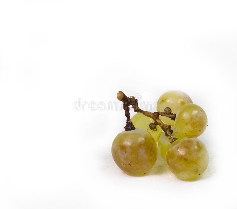 Zitsa d'isolement par jaune mûr Ioannina Grèce de raisin photo stock