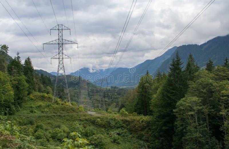 Zivilisation im tiefen Wald, Staat Washington, USA lizenzfreie stockbilder