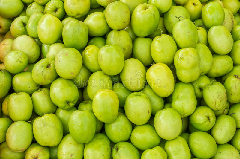Ziziphus mauritiana for sale. Ziziphus mauritiana also known as Jujube is a tropical fruit royalty free stock photos
