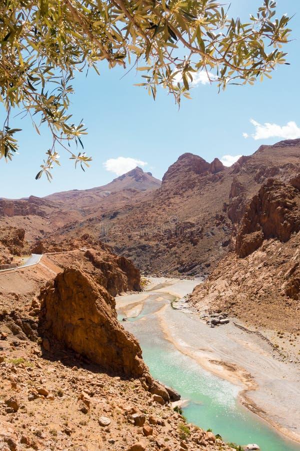 Zizrivier in de Atlasbergen van Marokko royalty-vrije stock fotografie