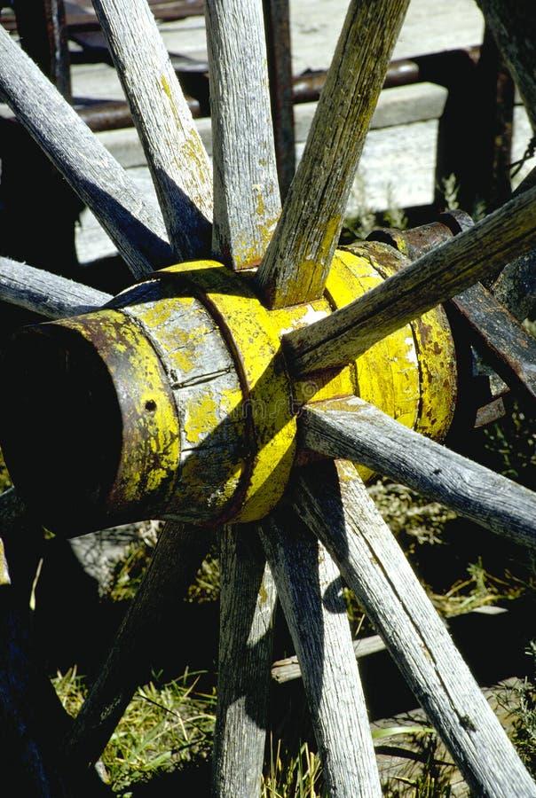 zjadłam wagon wheel fotografia royalty free