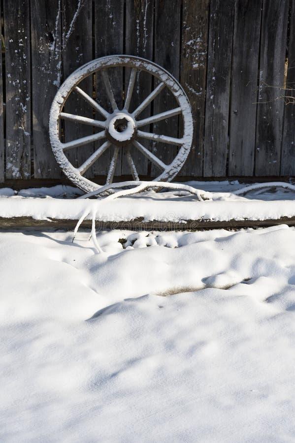 zjadłam wagon wheel. zdjęcia royalty free