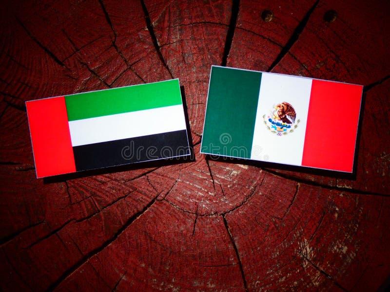 Zjednoczone Emiraty Arabskie flaga z Meksykańską flaga na drzewnego fiszorka isol zdjęcie royalty free