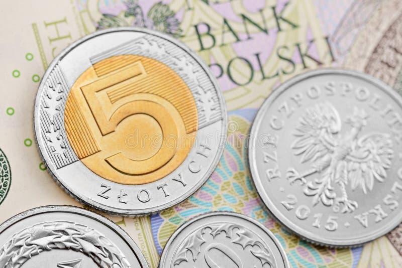 Zloty polaco fotos de archivo libres de regalías