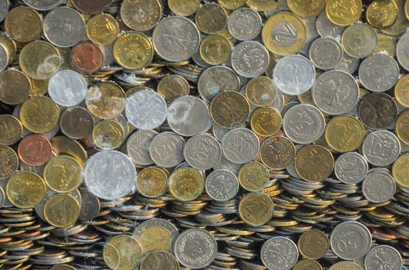 Zloty y peniques polacos de las monedas detrás del vidrio foto de archivo