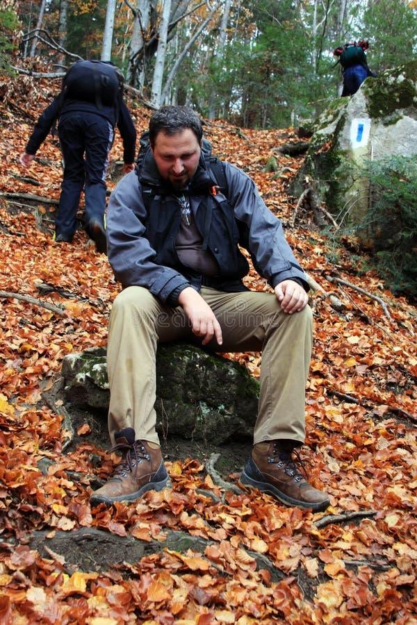 Zmęczeni mężczyzna target2_0_ w lesie fotografia royalty free