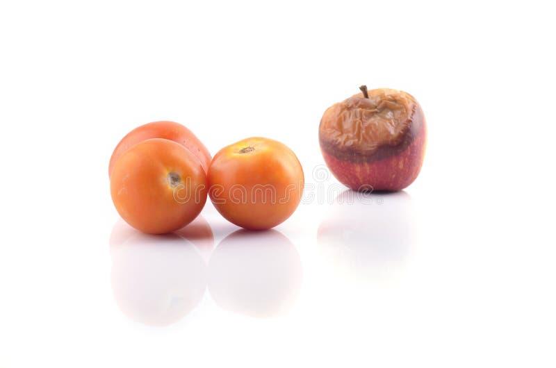 Zmarniały przegniły jabłko i pomidor odizolowywający na białym tle Sel obrazy stock