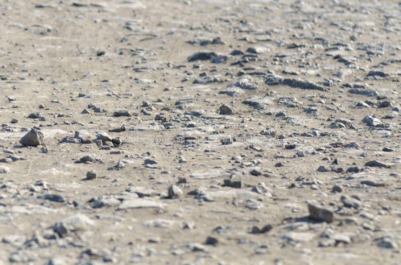 Zmielona balastowa tekstura Kamienie, świetny piasek drogi tło Mieszkanie nieatutowy, odgórnego widoku żwir, kopii przestrze obraz royalty free