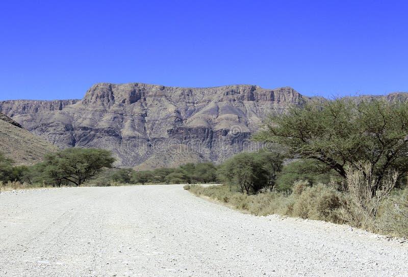 Zmielona droga przez pustyni zdjęcie royalty free