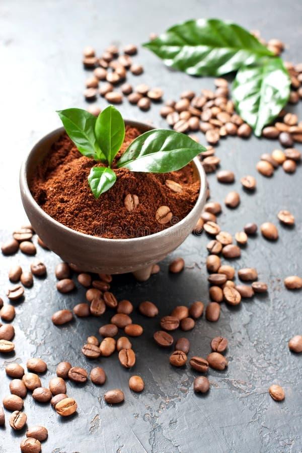 Zmielona kawa w ceramicznym pucharze zdjęcie royalty free